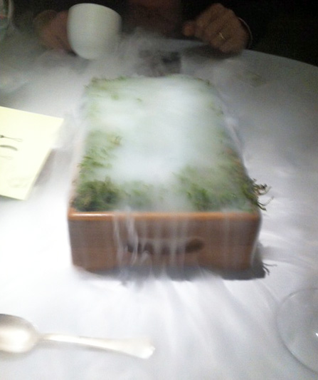 Fat Duck earth flavours, liquid nitrogen!